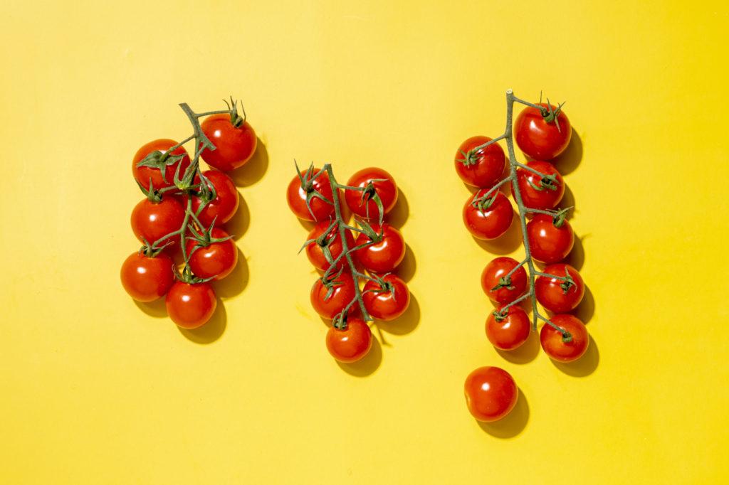 Drei Tomatensträucher auf gelben Untergrund